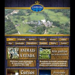 site institucional, com galeria de imagens