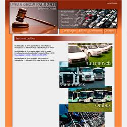 site institucional / informativo