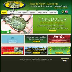 site institucional em 2 idiomas